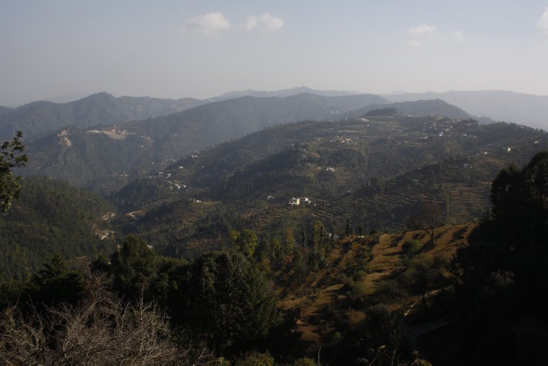 large_Ranikhet__.._Nov_13_160.jpg