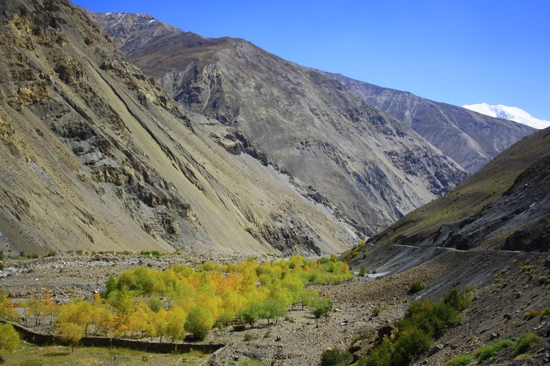 large_Spiti_and_..ley_116.jpg
