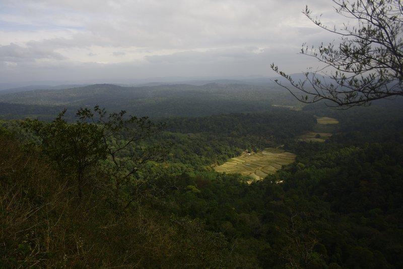 Lush Valley, Blue Hills