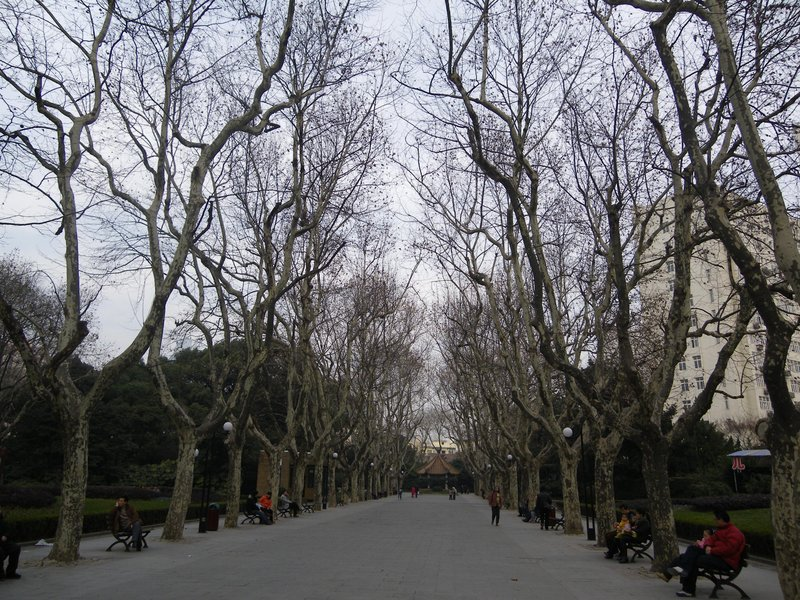 frenchconcession