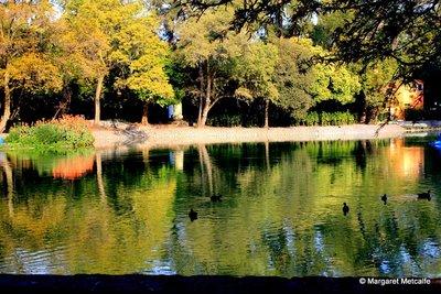 7IMG_8057_-..on_lake.jpg