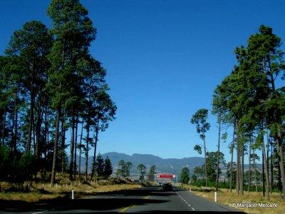 IMG_5181_-_Road.jpg