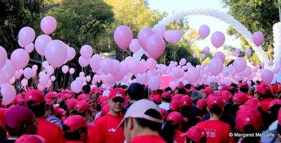 IMG_6765_-_Pink_crowd.jpg