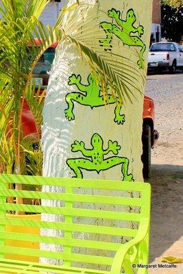 IMG_7223_-_Frogs.jpg