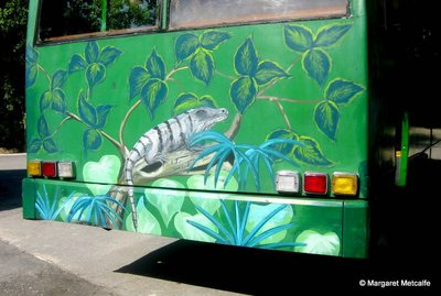 IMG_7569_-_bus.jpg