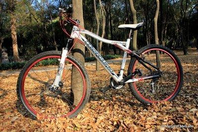 IMG_8077_-_Bike.jpg