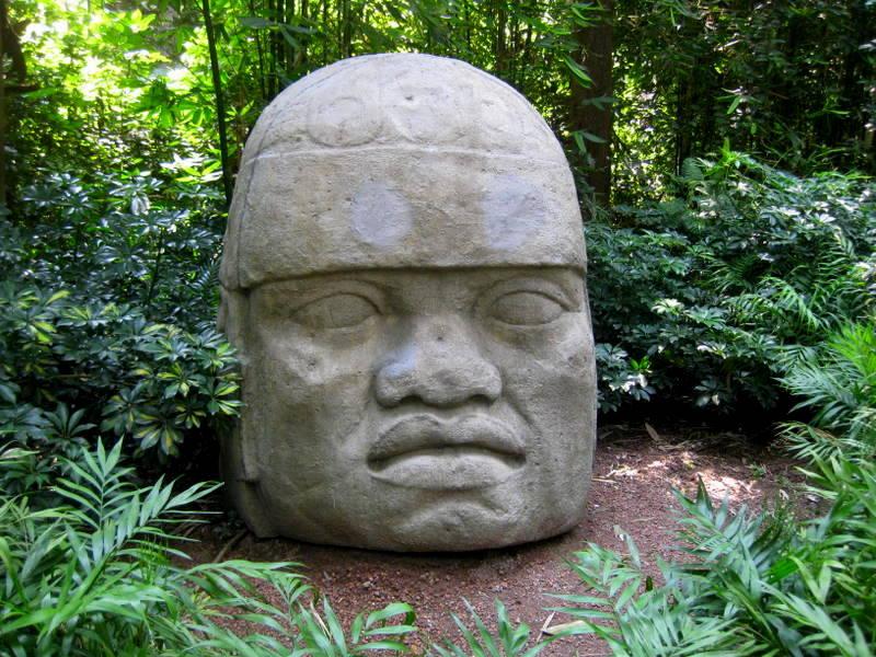 Stone head in jungle