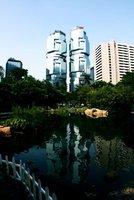 Hong Kong: Koalas
