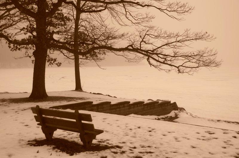 Frozen Lake Scene