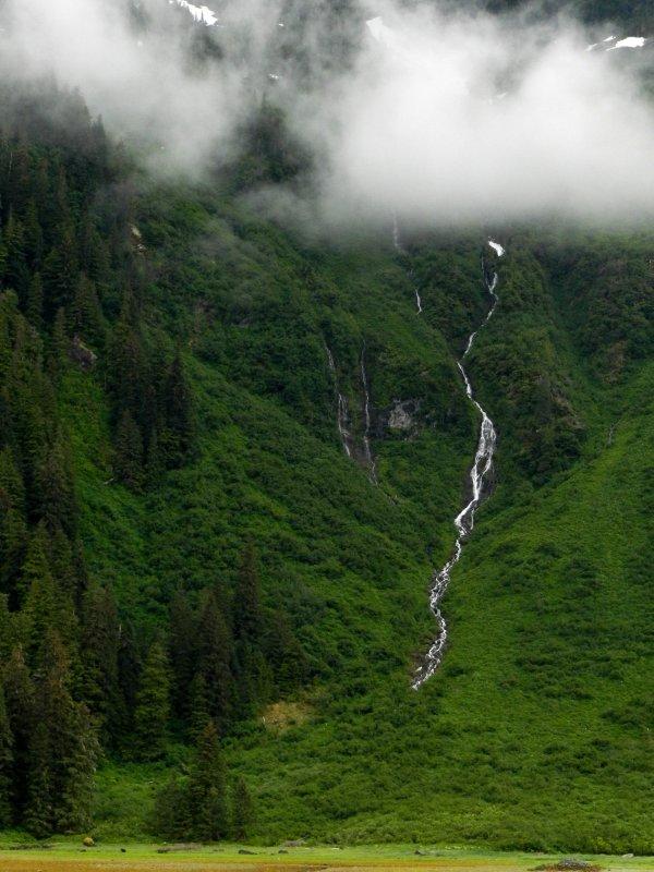 High Fjord Fall