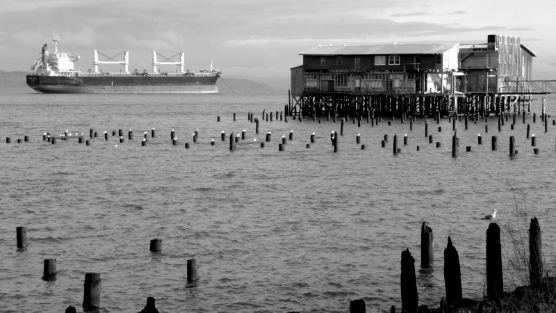 Old Cannery Pilings and Container Ships
