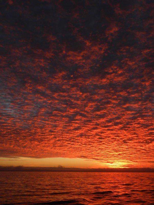 Alto-Cumulus in Orange