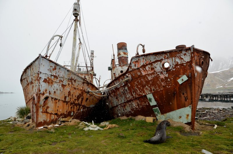 Two Whaling Ships