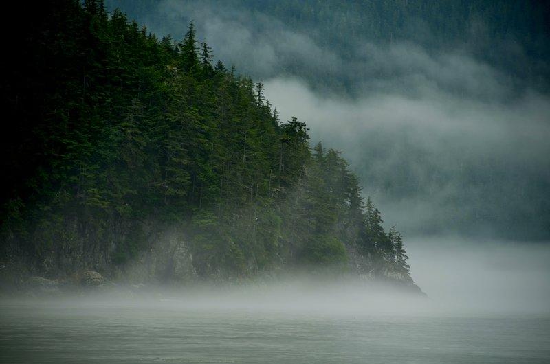 The Mists of Southeast Alaska