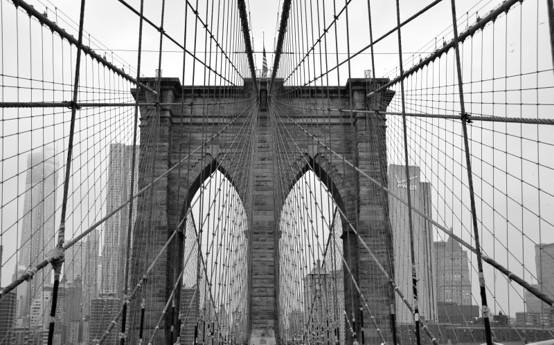 Brooklyn Bridge Cable Grid