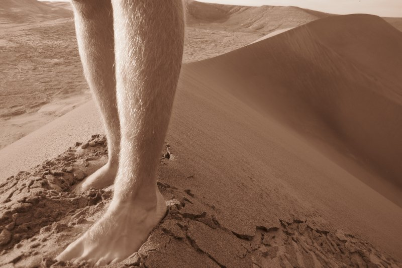 A Nice Portrait Of My Legs