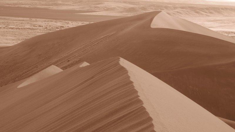 Crisp Dunes in Early Morning Light