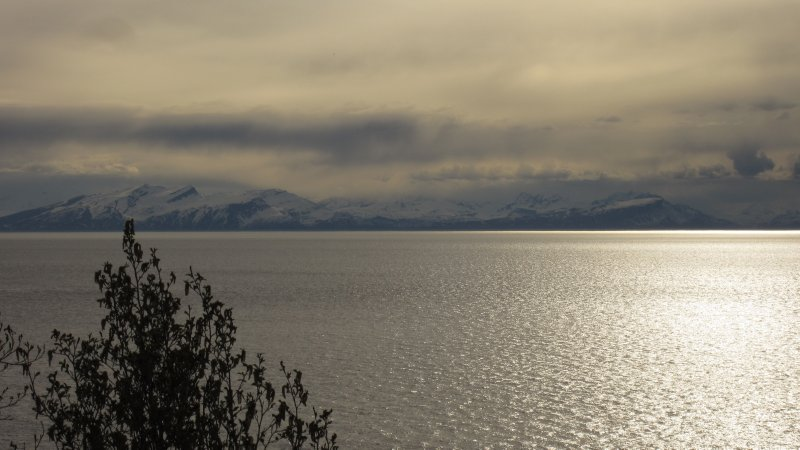 Western Kenai Peninsula