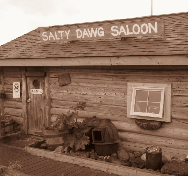 The Salty Dawg