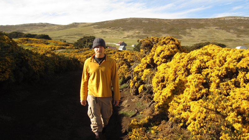Matching the Gorse