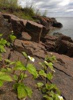 North Shore Ledges