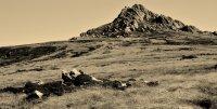 Mt. William