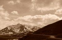 Mountain Splendor in Denali
