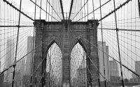 Brooklyn Bridge Cable Grid