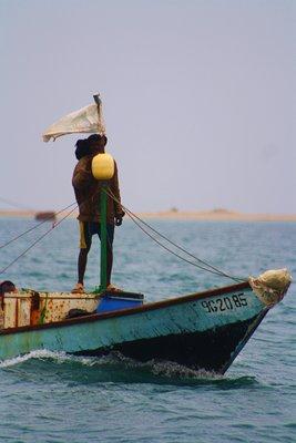 Fisherman-Taylor's Pic