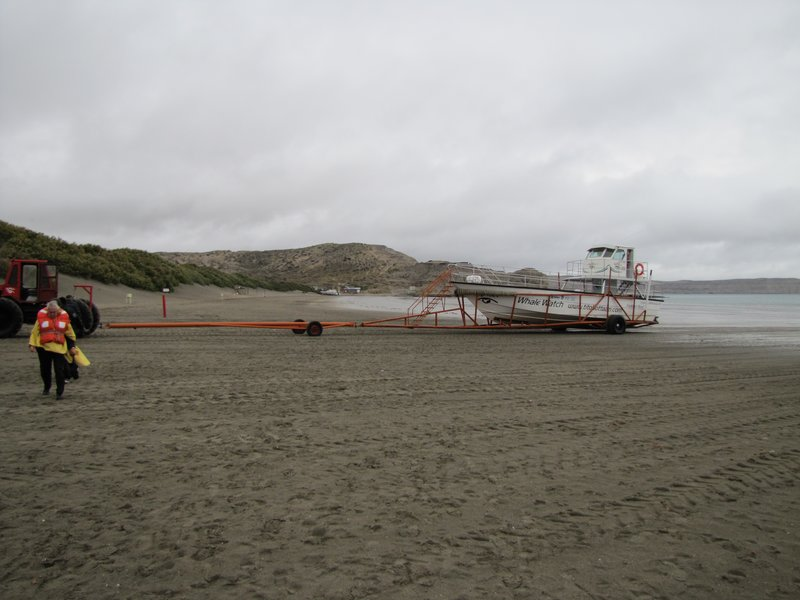 Puerto Piramides - Whale Boats being loaded