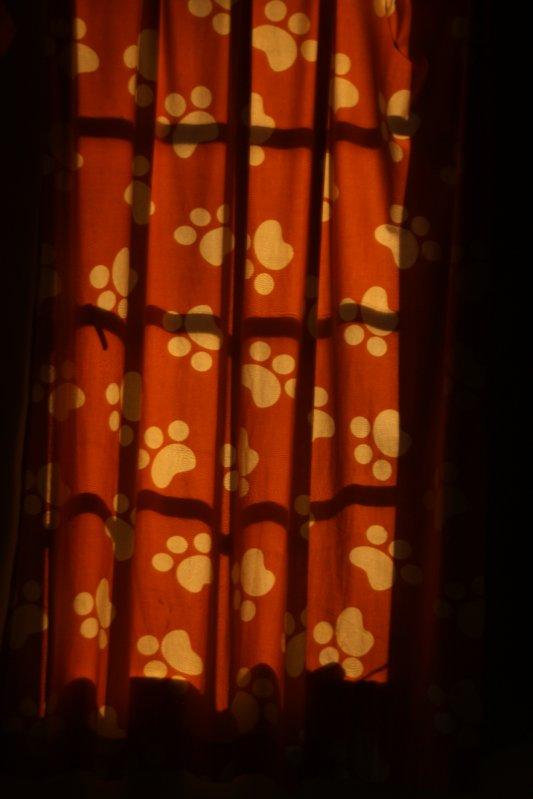 Footprints curtains