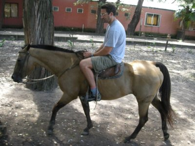 Seth ´enjoying´ horseriding!