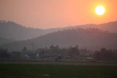 Sunset and green rice fields