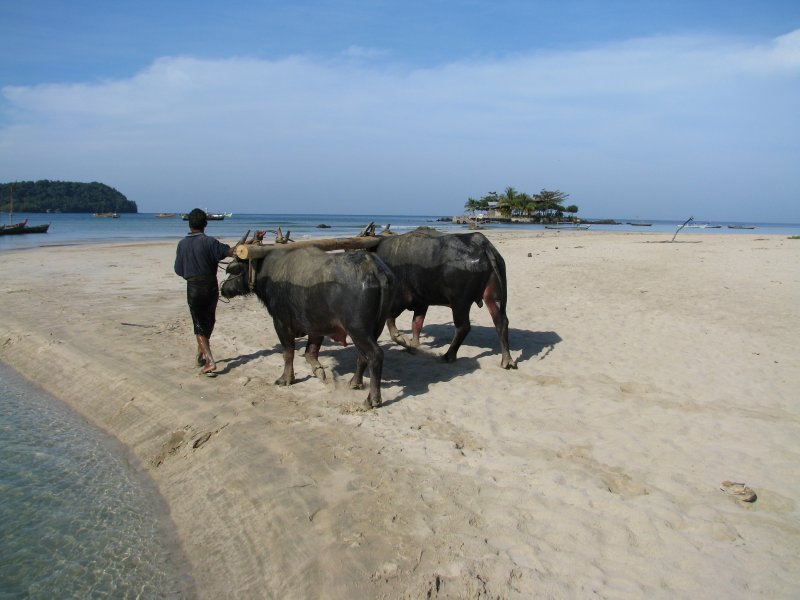 large_ThailandBurma_2427.jpg