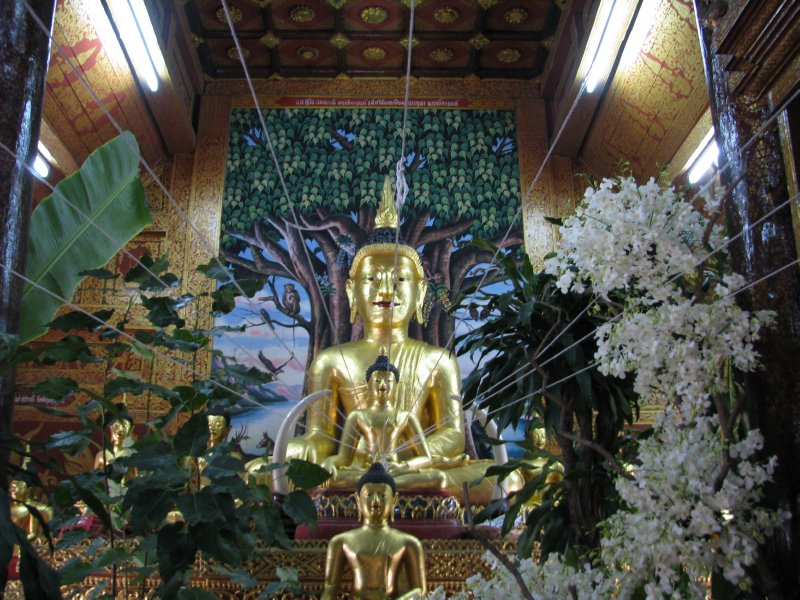 large_ThailandBurma_662.jpg
