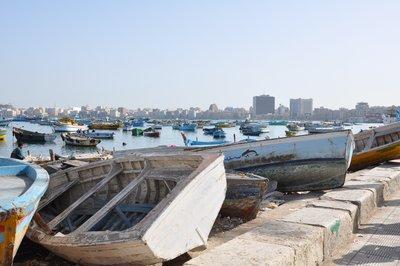 Alexandria__33_.jpg