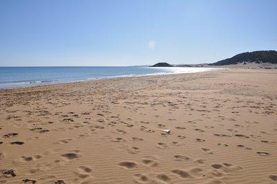 Golden_beach__82_.jpg