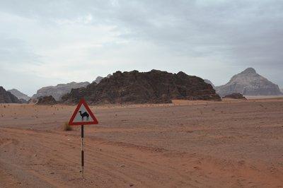 Wadi_Rum__89_.jpg