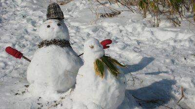 Snow Men Project