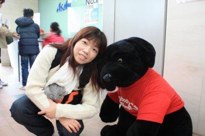 Doggy soft toy in Asahi