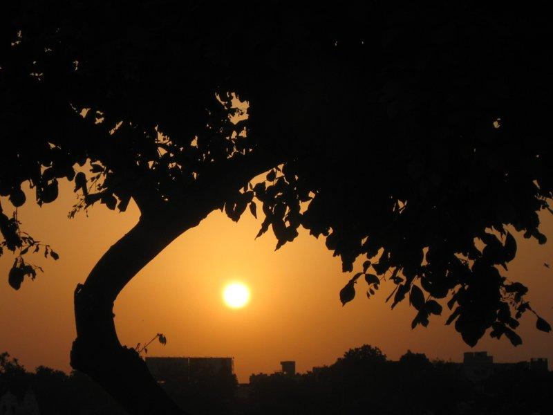 The sun - framed..!!