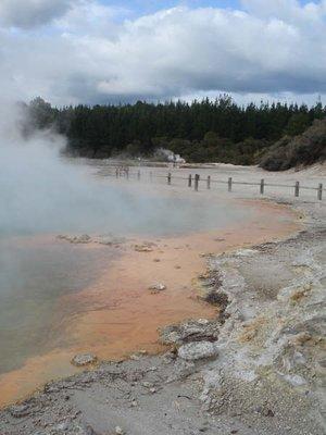 Geothermal..Roturua.jpg