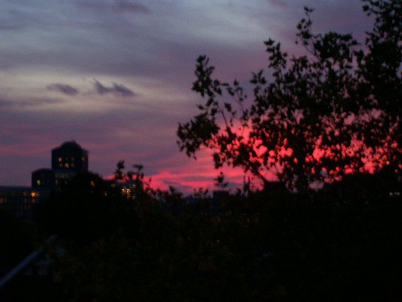 Den Haag night sky