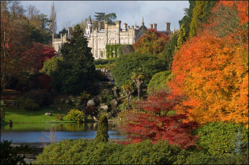 Sheffield Park Garden View