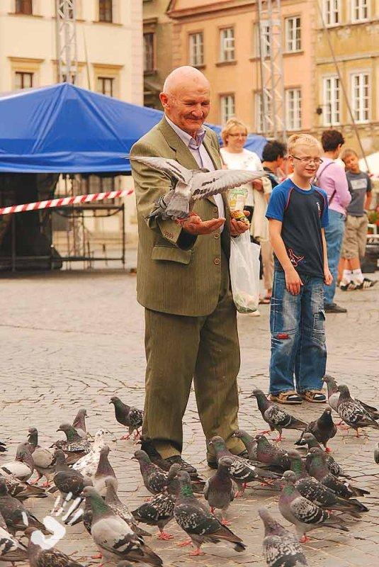 Pigeon in Warsaw Staro Myasto