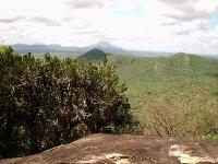Tsavo Ecosystem, Communities, Animals, volunteers