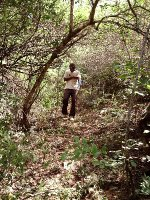 Tsavo Ecosystem