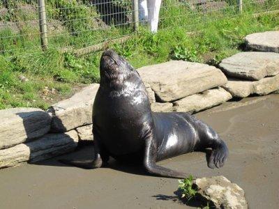 Bob soaking up some rays!