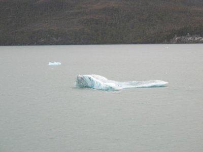 Chunks of floating ice