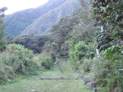 The start of an original Inca Path